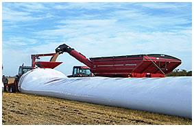 Grain-Bag